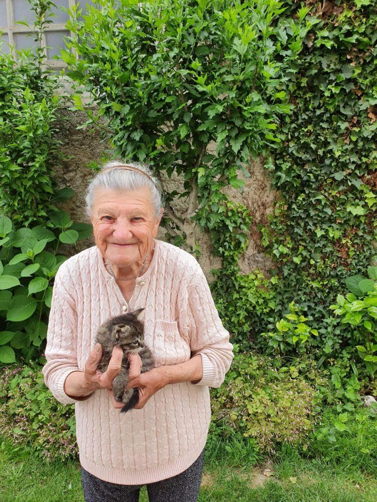 Foto Nonna con gattino